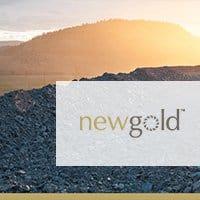 New Gold Case study image